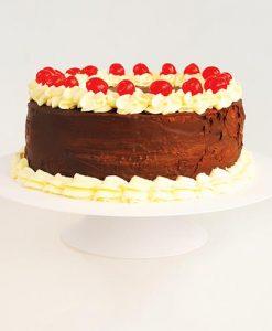 Plasticos - Bandeja para tortas y postres